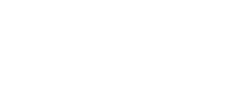 Simple graphic of a classic sports car, side view of the Lancia 037.